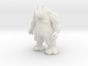 Rhino in White Natural Versatile Plastic