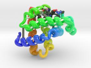 Myoglobin in Glossy Full Color Sandstone
