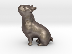 doggie-dog (bulldog) in Polished Bronzed Silver Steel