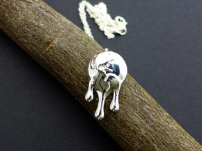 Climate Change Pendant - Nature Jewelry in Polished Silver
