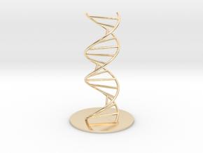 DNA Molecule Model Ladder. Sizes. in 14k Gold Plated Brass: 1:10