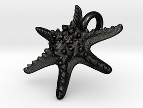 Horned Sea Star in Matte Black Steel