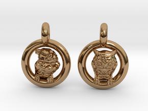 Owl Earrings in Polished Brass