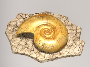 Helix fossil in Full Color Sandstone