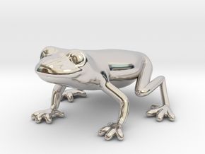 Red Eyed Tree Frog in Rhodium Plated Brass