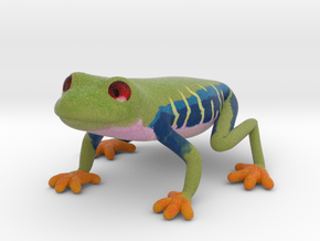 Red Eyed Tree Frog in Full Color Sandstone
