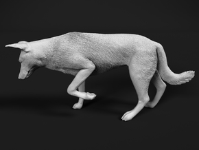 Saarloos Wolfdog 1:16 Female stalks small prey in White Natural Versatile Plastic