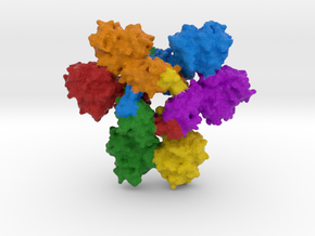 Ebola Nucleoprotein (NP) in Full Color Sandstone