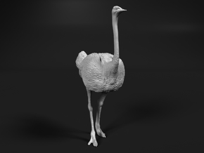 Ostrich 1:25 Standing Calm in White Natural Versatile Plastic