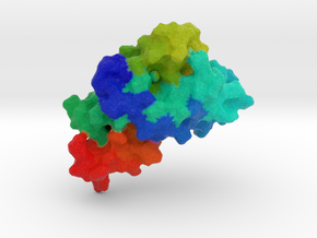 Human Prion Protein in Full Color Sandstone