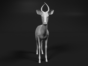 Impala 1:45 Male Juvenile in Smooth Fine Detail Plastic