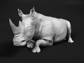 White Rhinoceros 1:35 Lying Female in White Natural Versatile Plastic