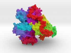 Oxoglutarate Dehydrogenase Complex in Full Color Sandstone