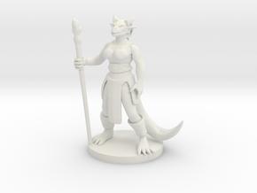 Dragonborn Female Magic Caster in White Natural Versatile Plastic