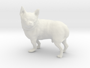 Scanned Chihuahua Dog -892 in White Natural Versatile Plastic