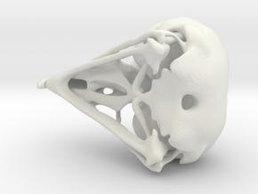 Eagle Skull Pendant AC:Origin in White Natural Versatile Plastic