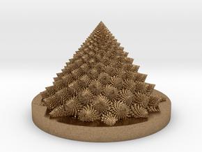 Romanesco fractal Bloom zoetrope (backwards) in Natural Brass: Medium
