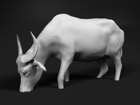Domestic Asian Water Buffalo 1:35 Grazing in Water in White Natural Versatile Plastic