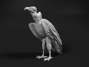 Lappet-Faced Vulture 1:6 Standing in White Natural Versatile Plastic