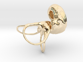 Dog_Inner_ear in 14k Gold Plated Brass