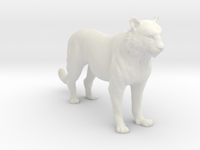 Printle Thing Tiger - 1/24 in White Natural Versatile Plastic