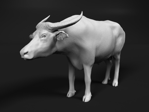 Domestic Asian Water Buffalo 1:16 Standing Male in White Natural Versatile Plastic