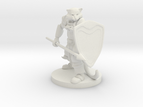 Catfolk Paladin in White Natural Versatile Plastic