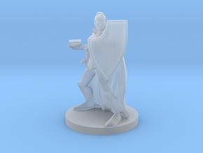 Female Eldritch Knight in Smooth Fine Detail Plastic