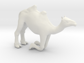 Printle Thing Camel Kneeling - 1/24 in White Natural Versatile Plastic