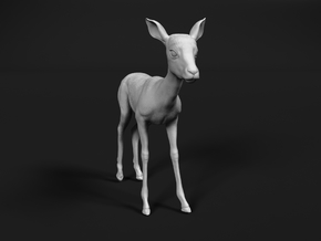 Impala 1:16 Standing Fawn in White Natural Versatile Plastic