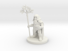 Dwarf Druid in White Natural Versatile Plastic