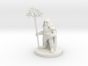 Dwarf Druid in White Strong & Flexible