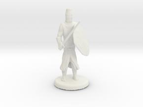 Templar Knight in White Natural Versatile Plastic