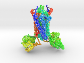 Chemokine Receptor in Glossy Full Color Sandstone