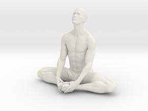 Male yoga pose 013 in White Natural Versatile Plastic: 1:10