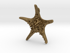 Knobby Starfish Pendant in Polished Bronze
