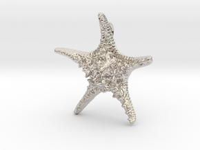 Knobby Starfish Pendant in Rhodium Plated Brass