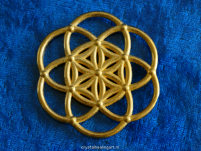 Seed Of Life in Polished Gold Steel