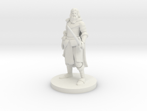 Light Armor Paladin in White Natural Versatile Plastic