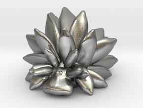 Costasiella Kuroshimae_Leaf Sheep  in Natural Silver: Small