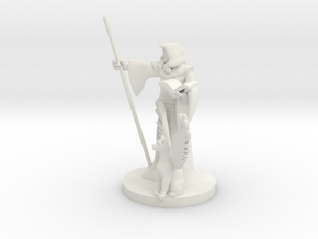 Elf Wizard and Tressym Familiar in White Natural Versatile Plastic