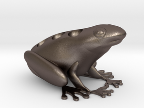 star-fingered toad egg rack in Polished Bronzed Silver Steel