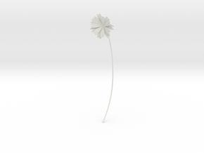 Daisy earring in White Natural Versatile Plastic
