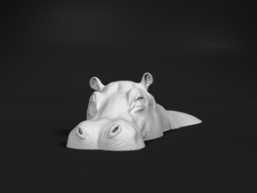 Hippopotamus 1:48 Lying in Water 1 in White Natural Versatile Plastic
