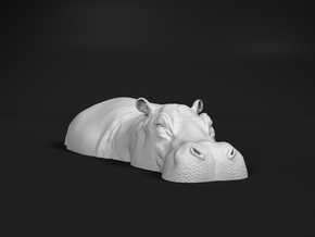 Hippopotamus 1:16 Lying in Water 2 in White Natural Versatile Plastic