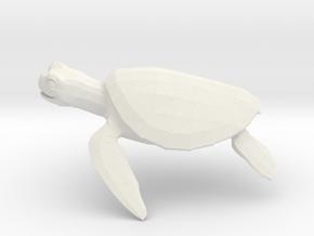 Turtle in White Premium Versatile Plastic