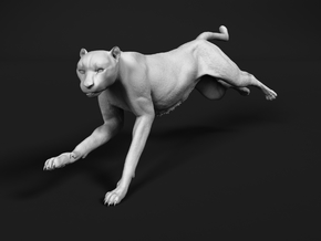 Cheetah 1:16 Running Female in White Natural Versatile Plastic