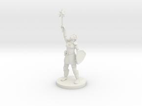 Female Dragonborn Paladin / Cleric in White Premium Versatile Plastic