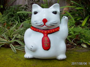 Maneki-Neko Planter 10cm in White Natural Versatile Plastic