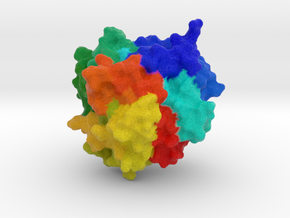 Carboxypeptidase A  in Full Color Sandstone